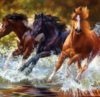KAZ021 Раскраска по номерам «Табун лошадей»