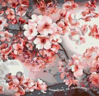 KAZ008 Раскраска по номерам «Сакура в цвету»