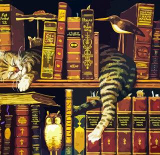 KAZ029 Раскраска по номерам «Спящий кот»