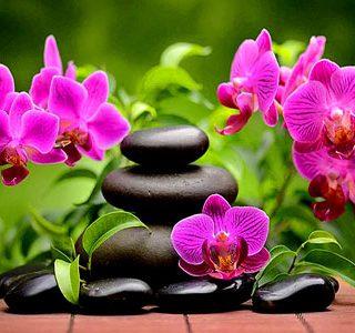 MKAZ626 Набор алмазный «Cпа. Розовые орхидеи»