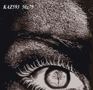 KAZ592 Раскраска по номерам «Лицо»