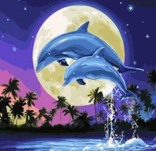 KAZ605 Раскраска по номерам «Дельфины»