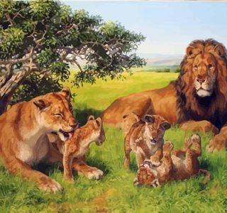 KAZ667 Раскраска по номерам «Семья львов»