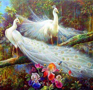 MKAZ784 Набор алмазный «Белые павлины в цветах2»